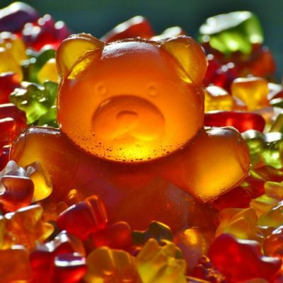 Haribo-camping-les-truffieres